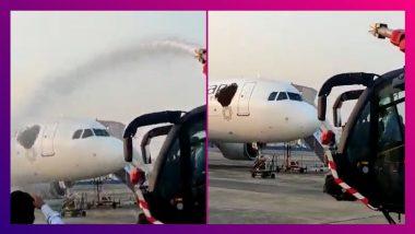 Swarm of Bees Attack Vistara Plane At Kolkata Airport: মৌমাছির দলকে ছত্রভঙ্গ করতে আনা হল জলকামান