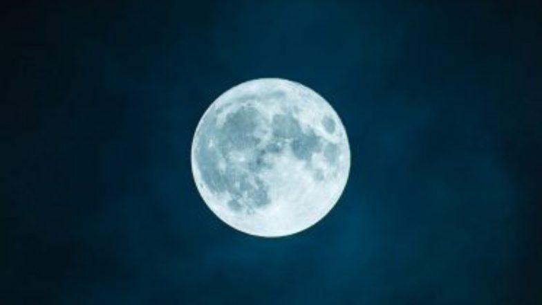 Sperm Bank in Moon: পৃথিবীতে প্রাণের বিলুপ্তির আগেই চাঁদে 'স্পার্ম ব্যাঙ্ক' খোলার ভাবনা বিজ্ঞানীদের