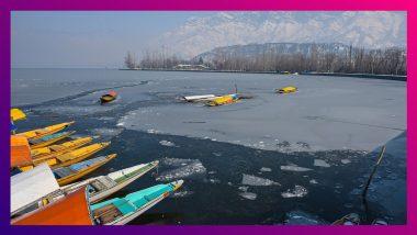 Dal Lake Freezes: ঠান্ডায় জমে বরফ ডাল, তীব্র ঠান্ডায় কাঁপছে উত্তর ভারত