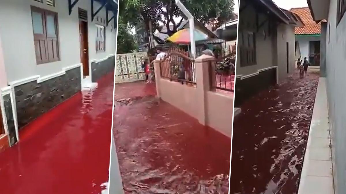 Indonesian Village Turns Red: লাল রঙের বন্যা বইছে এই গ্রামে, কিন্তু কেন?