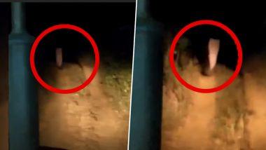 Real Ghost Caught on Camera?: রাতের অন্ধকারে হাড়হিম করা ভূতুড়ে ঘটনা, ভয় ধরিয়েছে ওড়িশার এই ভিডিও
