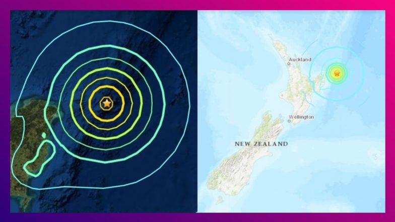 New Zealand Hit By Earthquake: ৮.১ রিখটার স্কেলে কেঁপে উঠল নিউজিল্যান্ড
