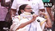 Mamata Banerjee: কলকাতায় আর বড় কোনও সভা নয়, সিদ্ধান্ত মমতা বন্দোপাধ্যায়ের