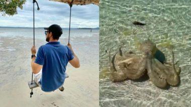 Australia : 'রাগী' অক্টোপাসের হামলায় বেসামাল ভূতাত্ত্বিক, ভাইরাল ভিডিয়ো