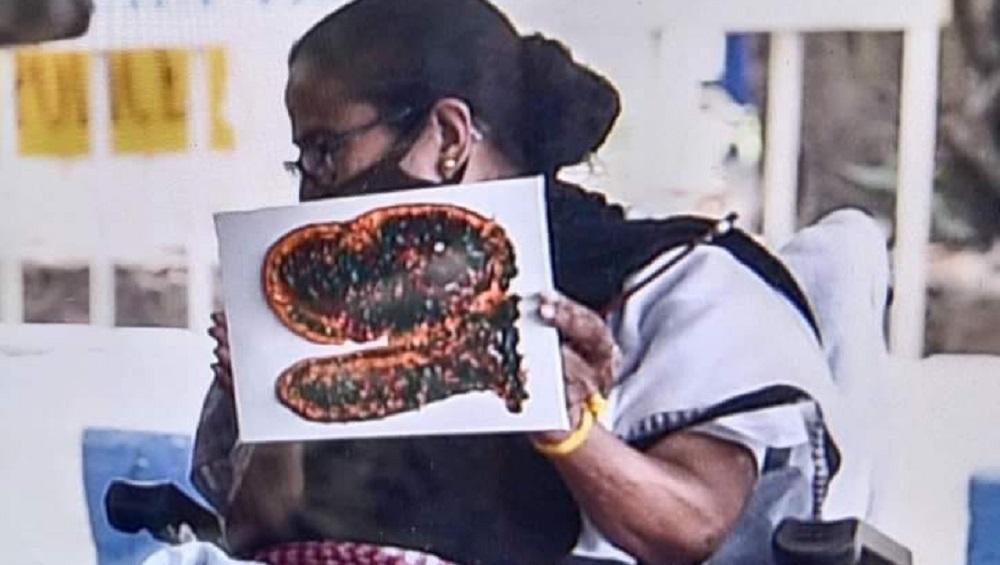 West Bengal Assembly Election 2021 : ধর্না মঞ্চে মমতার আঁকা ছবি নিয়ে কী বললেন নেটিজেনরা!