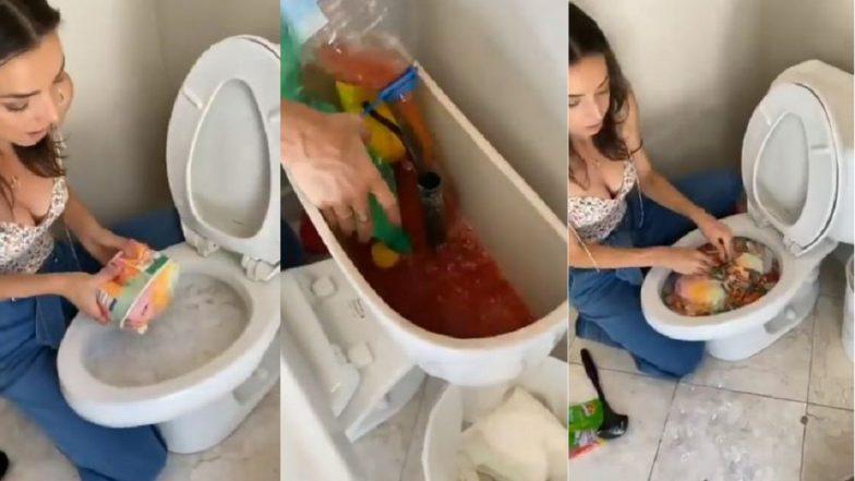Party Drink Inside Toilet: কমোডের মধ্যে তৈরি ভয়ঙ্কর 'পার্টি ড্রিঙ্ক', ভিডিয়ো ভাইরাল অন্তর্জালে