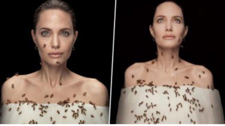 Angelina Jolie On World Bee Day: গা ভর্তি মৌমাছিতে অ্যাঞ্জেলিনা জোলি, ব্যাপারটা কী?