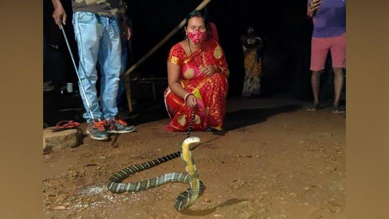King Cobra: ছোট্ট ছেলেটা খেলনা ভেবে ধরতে গেল ৮ ফুটের কিং কোবরা, সাপকে ঝাঁপিয়ে ধরে ছেলেকে বাঁচাল মা