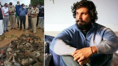 Randeep Hooda: ৬০টি বাঁদরকে নৃশংস হত্যা, মুখ্যমন্ত্রীর হস্তক্ষেপ চেয়ে গর্জে উঠলেন রণদীপ হুডা