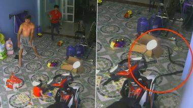 King Cobra: ঘরে ঢুকে শিশুকে তাড়া করছে কিং কোবরা, CCTV-তে ওঠা ভিডিও দেখে চমকে   যাবেন