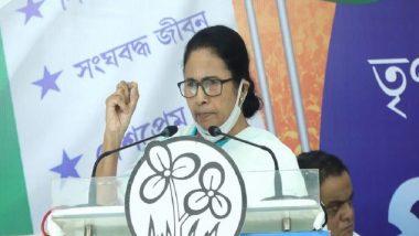 Mamata Banerjee: অভিষেক, সুব্রতদের সঙ্গে রাজনৈতিকভাবে লড়ুন, সিংহের মতো লড়ব সারা জীবন, বললেন মমতা
