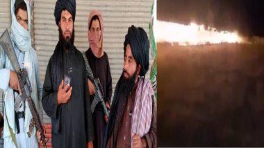 Taliban: ধর্মে মূর্তি রাখার অনুমতি নেই, শিশুদের পার্ক জ্বালিয়ে দিল তালিবান, দেখুন ভিডিয়ো