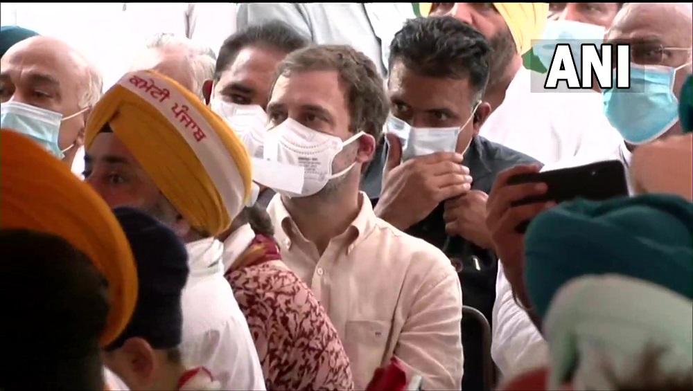 Rahul Gandhi: মমতার পর বিজেপি বিরোধিতায় শান রাহুলের, কৃষি আইনের প্রতিবাদে এককাট্টা বিরোধীরা
