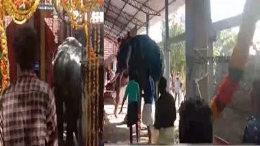 Kerala: ক্ষেপে গিয়ে মন্দির চত্বরে হাতির ধাক্কা, পদপিষ্ট হওয়া থেকে পালালেন পুরোহিত, ভাইরাল ভিডিয়ো