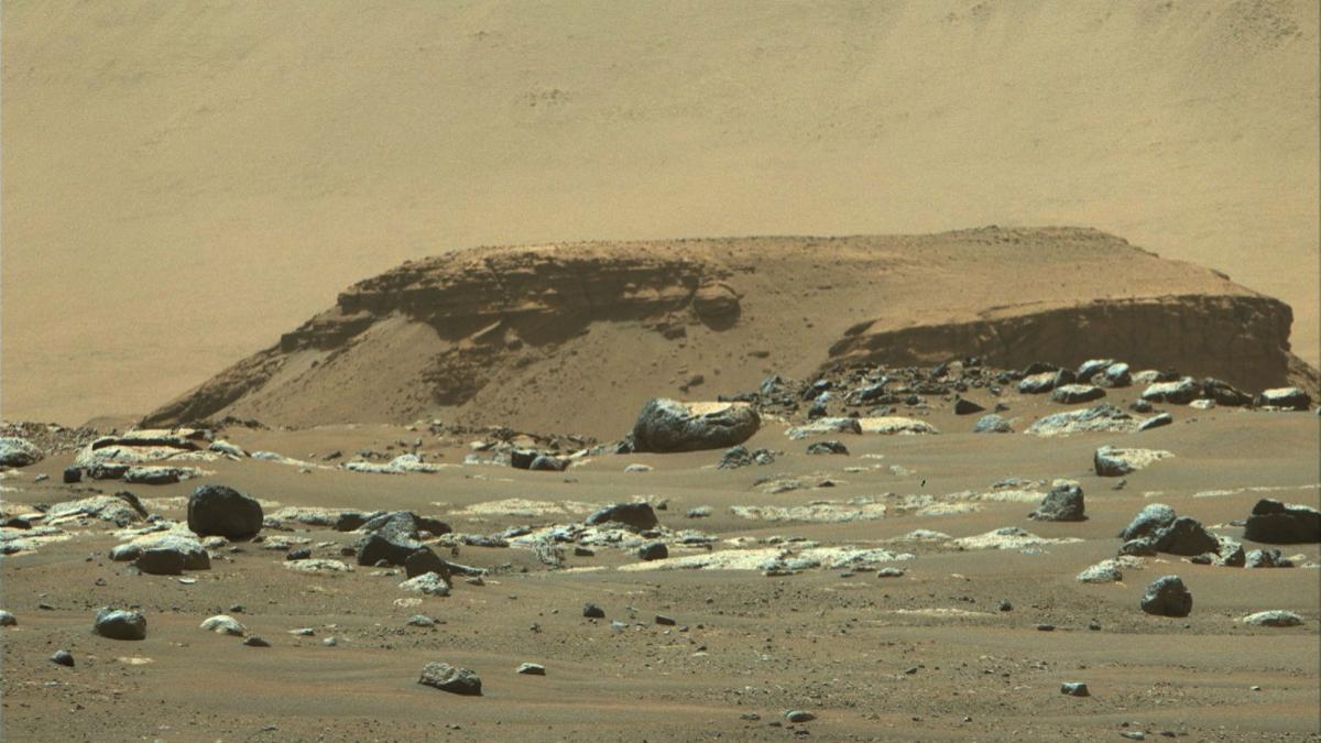 River Delta On Mars: মঙ্গলে নদী বদ্বীপের অস্তিত্বের খোঁজ দিল নাসার পার্সিভিয়ারেন্স রোভার